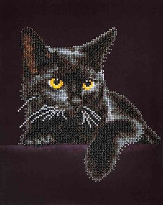 Diamand Dotz - Midnight Cat - DD5.001