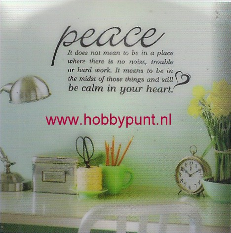 Hip in an Hurry - HHSB17750 -  Peace at Rest